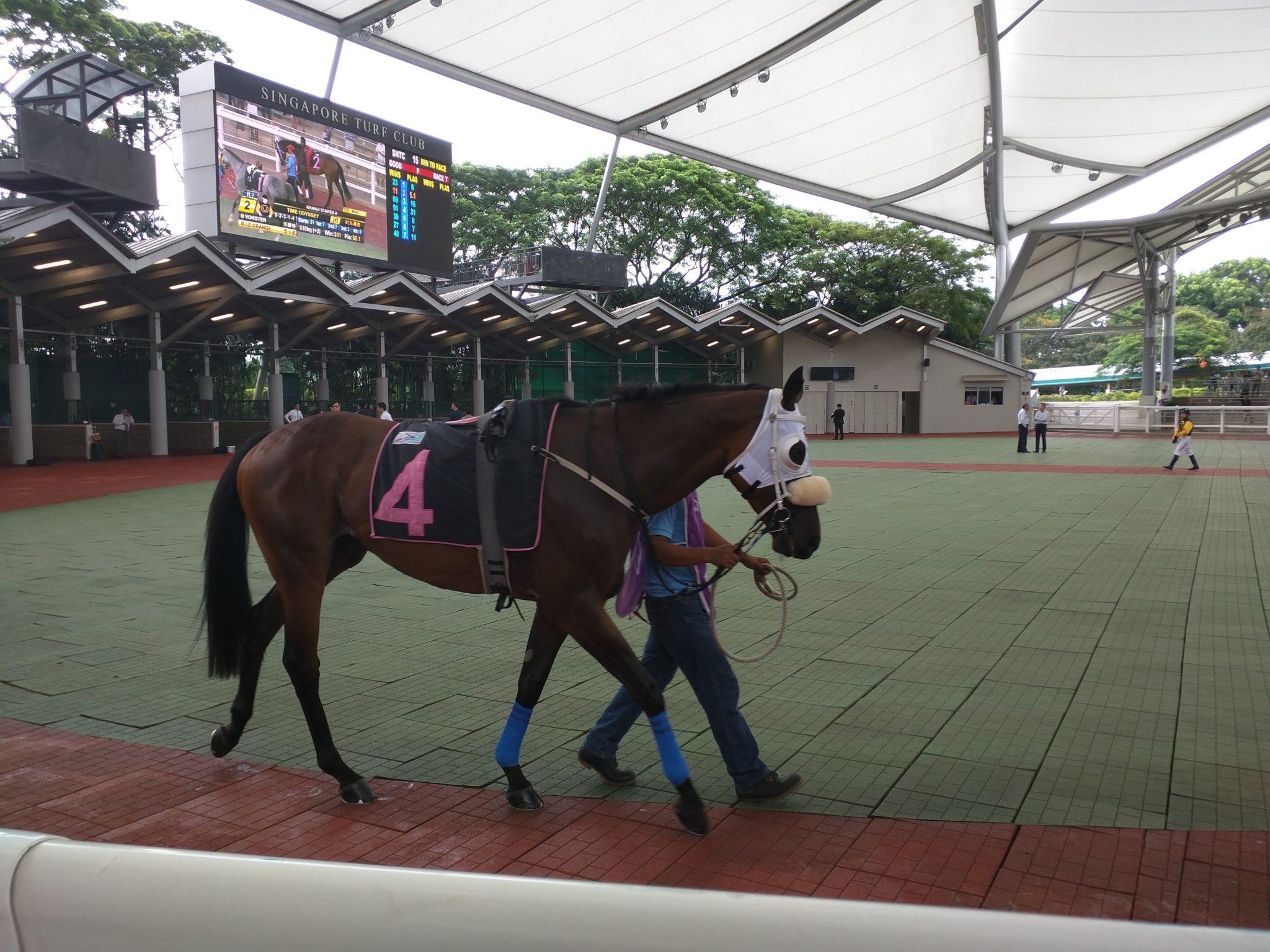 日本版マレーシアのカジノ–228651